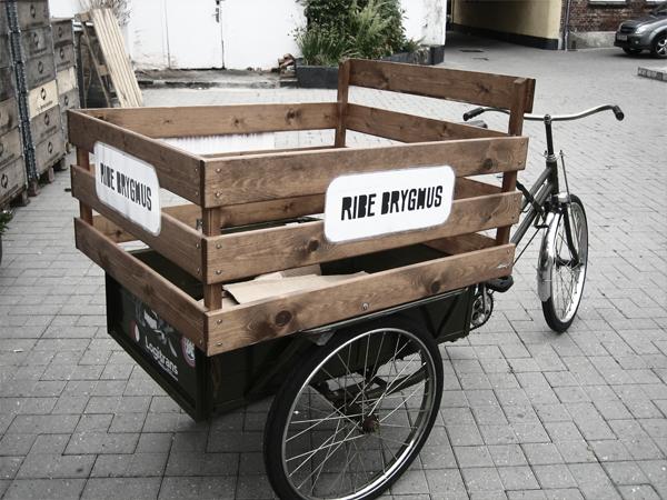 ribe_cykel.png